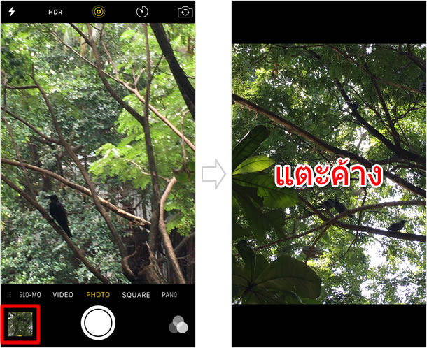 Play Live Photo on recording screen