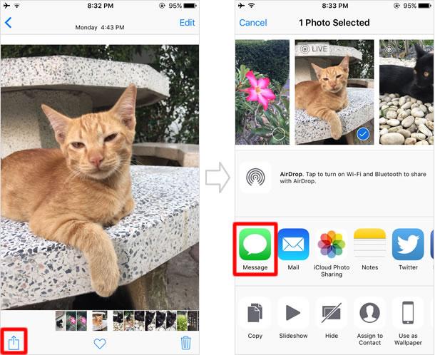 Send Live Photos via iMessage
